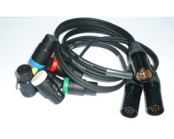 NAGRIT Y-Cable, Neutrik XLR-5M to 2 Ambient Low Profile XLR-3F Low Profile